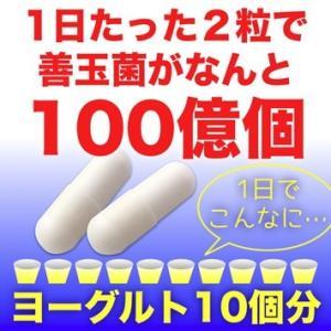生きたまま腸に届く『ビフィズス菌+乳酸菌』|pejapan|02