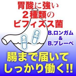 生きたまま腸に届く『ビフィズス菌+乳酸菌』|pejapan|03