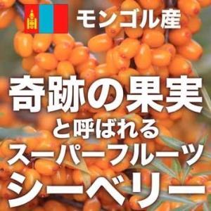オメガ7高含有サプリメント モンゴル産『シーベリーオイル』90粒|pejapan|02