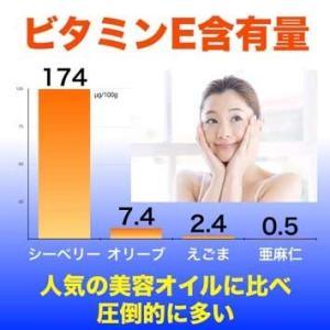 オメガ7高含有サプリメント モンゴル産『シーベリーオイル』90粒|pejapan|06