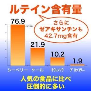 オメガ7高含有サプリメント モンゴル産『シーベリーオイル』90粒|pejapan|07