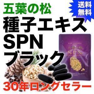 五葉の松種子SPNエキス『ブラック』90粒|pejapan