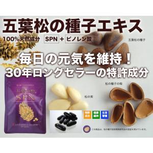 五葉の松種子SPNエキス『ブラック』90粒|pejapan|02