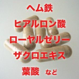 栄養機能食品 鉄分補給『フィリップ・グレイ』120粒|pejapan|03