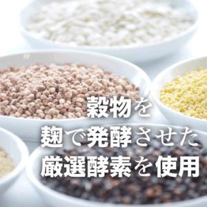 厳選酵素『麹 de Zyne』120粒|pejapan|03