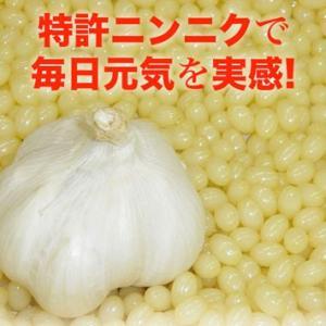消臭ニンニク&松の実オイル『ママパイン』90粒|pejapan|03