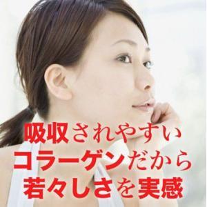 美容コラーゲン『ファンタスティック』220g|pejapan|05