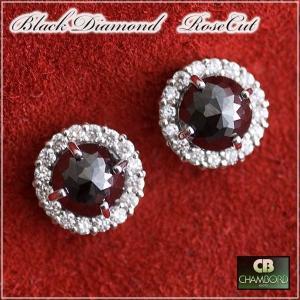 ブラック ダイヤモンド&ダイヤ取巻き ピアス K18WG(各0.70ct/0.14ct)【送料無料/限定品/特別価格】 pendant
