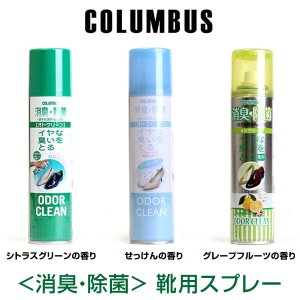 180ml COLUMBUS コロンブス 消臭 除菌 オドクリーン シトラスグリーンの香り|pennepenne