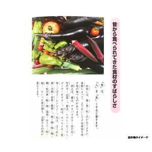 和食学習帳 B5 5mm方眼罫 リーダー罫入 ショウワノート 578-0000-01 【メール便OK】 penport 02
