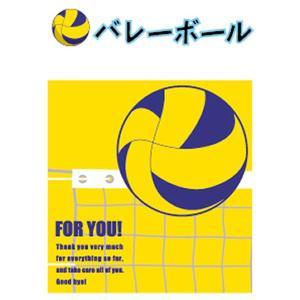 学校色紙2 【バレーボール】 アルタ AR0819116|penport