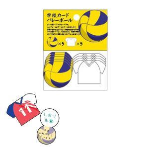 学校カード 【バレーボール】 アルタ AR0819121 penport