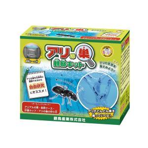 アリの巣観察キット 銀鳥産業 MA-AKD 307-011|penport