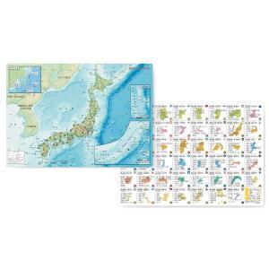 地図下敷き A4 【日本地図】 東京カートグラフィック  PSMJ 【メール便OK】|penport
