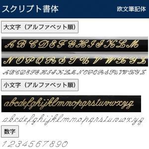 ボールペン 名入れ パーカー PARKER ソネット SONNET ニューコレクション 19507|penworld|07