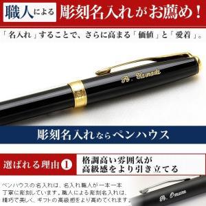 ボールペン 名入れ / ウォーターマン ボールペン エキスパート デラックス ブラックCT S/S2243372 13834  (15000) penworld 07