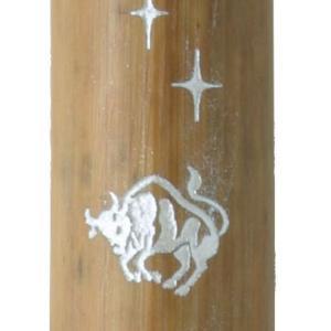 あかしや 万年毛筆 天然竹筆ペン カスタムオーダー 星座シリーズ 牡牛座 (名入れ無料サービス) 259FAK3200MK-14 (3200)|penworld