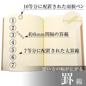 Pent〈ペント〉 パピルス ノート ビブリオン  by大和出版印刷 罫線 バイブルサイズ 39605 (2760)|penworld|05