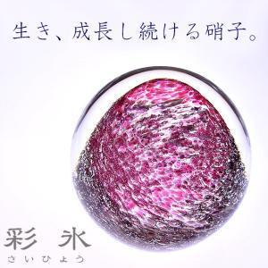 Pent〈ペント〉 ペーパーウェイトbyアートファクトリー 彩氷 葡萄畑 39727 (7500) penworld