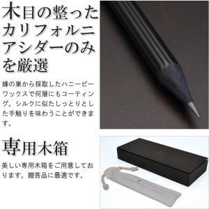 鉛筆 ファーバーカステル FABER-CASTELL パーフェクトペンシル PVDコーティング ブラック 118531 41495 |penworld|06