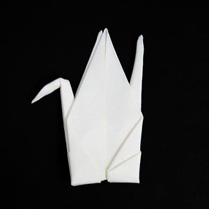 【クリックポスト送料無料】Peti Peto(プッチペット) Tsuru White(ツル ホワイト)/レンズクリーナー/Perrocaliente(ペロカリエンテ)|pepapape
