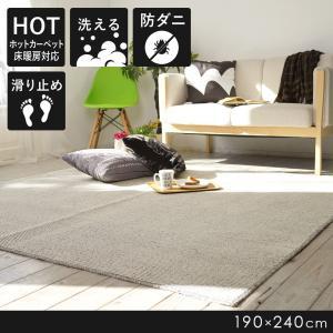 ラグ 防ダニ 〜ファンラグ〜 グレー 190×240cm 最短翌日出荷 perfect-space-c