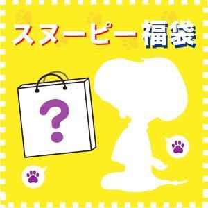 スヌーピー福袋 パーフェクトワールドトーキョー5000 先行予約 2020年3月下旬発送 予約品