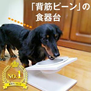 【犬 猫 食器 食器台】傾斜のある食器台(Sサイズ) ( 犬用 猫用 食器台 フード ボウル 食器 ...