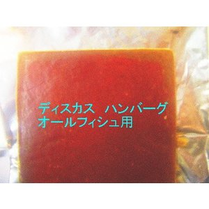 特注 冷凍 ディスカス ハンバーグ 100g (10枚) ビタミン・ミネラル・ガーリック