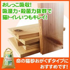 天然杉 端切れ板 500g エコにゃん おがくずタイプの底に敷いてください pet-kagu-kagu