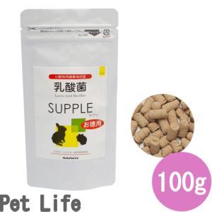 サンコー 乳酸菌100gの関連商品6