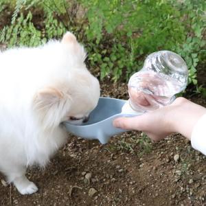 PS携帯水のみボトル青