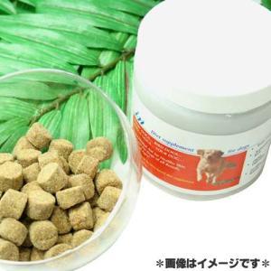 ファンタジーワールド ペット用サプリメント IN 犬用 340g 120241|pet-square