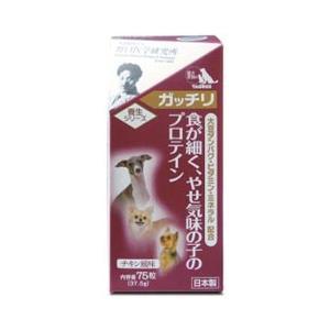 トーラス 犬用サプリメント 養生シリーズ ガッチリ 食が細く、やせ気味の子のプロテイン 75粒|pet-square