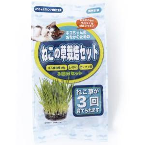 猫用品 アラタ ねこの草 栽培セット 3回分|pet-square