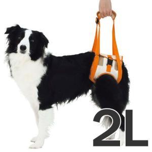 ペティオ 犬の歩行補助ハーネス 老犬 介護 後足用 2L 中型犬 介護用品 シニア犬|pet-square
