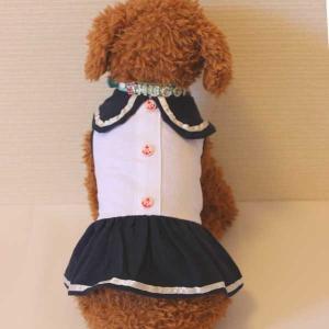 (EC)犬の服 ドッグウェア ガールズセーラーワンピース(ネイビー×ホワイト)(S〜XLサイズ) ルイスペット (送料無料 代金引換不可 同梱不可)|pet-square