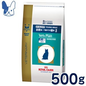 準食事療法食 ロイヤルカナン 猫用 ベッツプラン [メールケア] (ドライ) 500g|petcure-dgs
