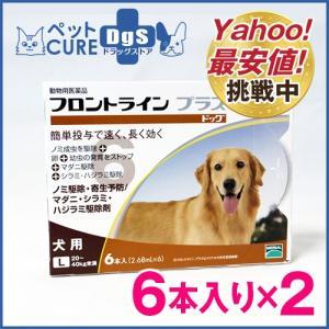 犬用 フロントラインプラス ドッグ L(20〜40kg) 6ピペット×2箱セット〔メール便対応不可〕