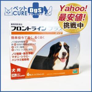 犬用 フロントラインプラス ドッグ XL(40〜60kg) 6ピペット