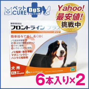 犬用 フロントラインプラス ドッグ XL(40〜60kg) 6ピペット×2箱セット