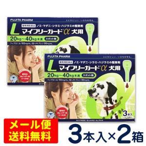 マイフリーガードα 犬用 L(20〜40kg) 3本入り×2個セット【メール便専用】ノミ・マダニ予防薬 フロントラインプラス ジェネリック|petcure-dgs