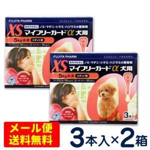 マイフリーガードα 犬用 XS(5kg未満) 3本入×2個セット【メール便専用】ノミ・マダニ予防薬 フロントラインプラス ジェネリック|petcure-dgs