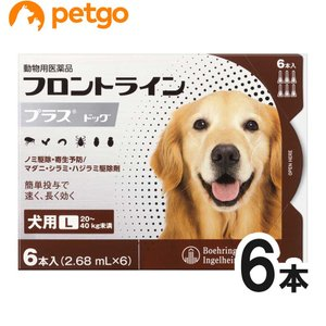 犬用フロントラインプラスドッグL 20kg〜40kg 6本(6ピペット)(動物用医薬品)|petgo