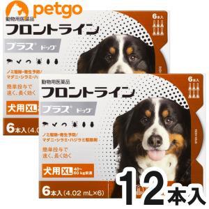 【2箱セット】犬用フロントラインプラスドッグXL 40kg〜60kg 6本(6ピペット)(動物用医薬品)【送料無料】