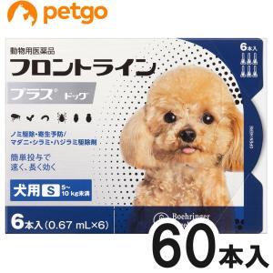 【10箱セット】犬用フロントラインプラスドッグS 5〜10kg 6本(6ピペット)(動物用医薬品)