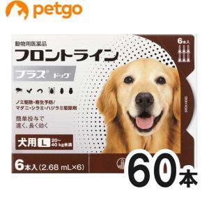 【10箱セット】犬用フロントラインプラスドッグL 20kg〜40kg 6本(6ピペット)(動物用医薬品)【送料無料】