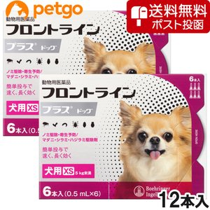 【ネコポス(同梱不可)】【2箱セット】犬用フロントラインプラスドッグXS 5kg未満 6本(6ピペット)(動物用医薬品)|petgo