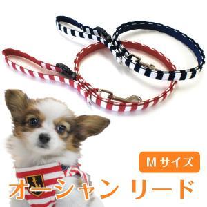 小型犬用 オーシャン リード「単品」(Mサイズ)|petgp
