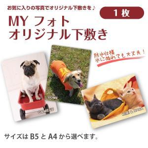 犬・猫の写真入り下敷き  MY フォト オリジナル下敷き 1枚 petgp